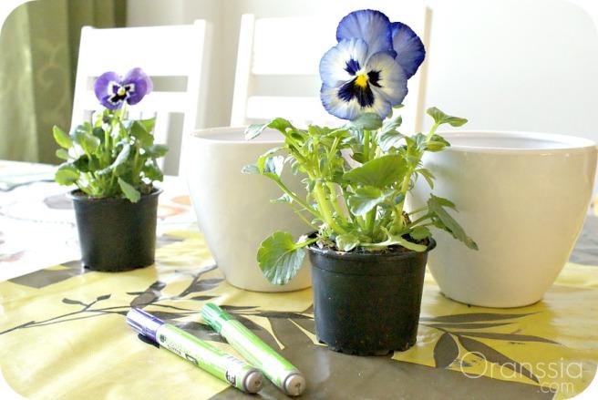 kukkaruukun koristeleminen tussilla